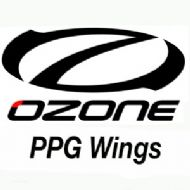 PPG Wings
